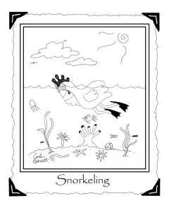 snorkelingweb