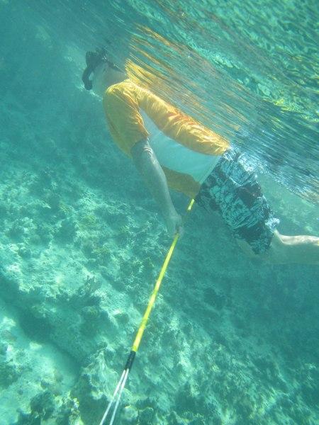 bobpolefish1