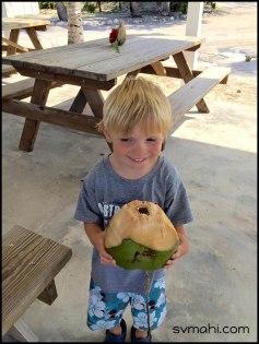 Ethancoconut
